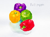 Bell pepper watercolor painted Royalty Free Stock Photo