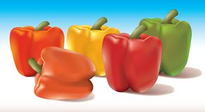 Bell peppers 2. Realistic illustration of bell peppers Royalty Free Stock Image