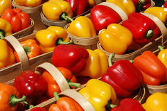 Bell Peppers. Red, orange and yellow bell peppers in farmer baskets royalty free stock image