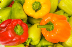 Bell peppers arranged Royalty Free Stock Photography