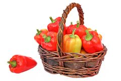 Bell Peppers in the Basket Stock Image