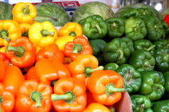 Bell Peppers, Capsicum annuum Royalty Free Stock Photos