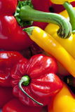 Bell peppers, chili and habaneros, close up royalty free stock photography