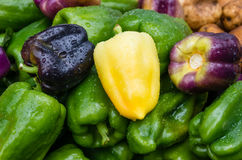 Bell peppers green yellow at market Royalty Free Stock Photography