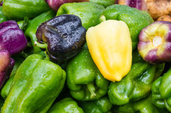 Bell peppers green yellow at market Royalty Free Stock Images