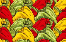 Bell peppers. Hand drawn  fresh useful bell peppers seamless pattern Royalty Free Stock Photos