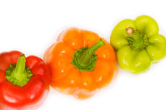 Bell peppers isolated Royalty Free Stock Image