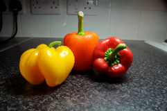 Bell peppers in kitchen. Three bell peppers of different colors on kitchen hardtop,with electric sockets in background Stock Photography