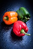 Bell peppers. Orange, red and green bell peppers on blue table after rain Stock Image