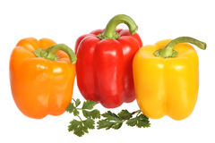Bell peppers with parsley Royalty Free Stock Photography