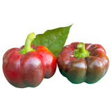 Bell peppers. Royalty Free Stock Photo