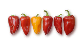 Bell peppers. Royalty Free Stock Photography