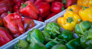 Bell Peppers. Red, yellow and green sweet bell peppers in bins at a vegetable market Stock Photo