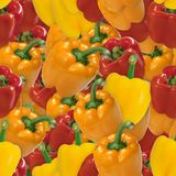 Bell Peppers Seamless Texture Tile Stock Photo