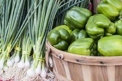 Bell peppers and spring onions. Fresh organic and locally grown bell peppers, green onion on sale at local farmers market Stock Photography