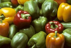 Bell peppers of various colors Royalty Free Stock Images