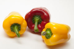 Bell Peppers on a white background Stock Images