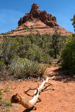 Bell Rock just north of the Village of Oak Creek, Arizona. Hikers trying to climb up Bell Rock, a popular sandstone rock  just north of the Village of Oak Creek Royalty Free Stock Photos