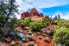 Free Bell Rock Showing Vegetation Growing On The Red Rocks And Red Soil In Coconino National Forest Near Sedona Royalty Free Stock Photo - 138514565