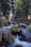 Bell's Canyon River in Utah. This photo was taken in Utah at Bells Canyon Royalty Free Stock Images