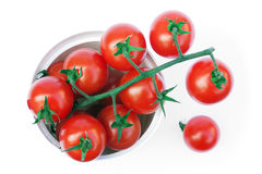 Bell tomatoes on the vine in the plastic cup Royalty Free Stock Images