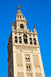 Bell tower of Cathedral church,  Seville, Spain Royalty Free Stock Photo