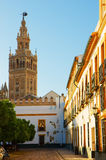 Bell tower of Cathedral church,  Seville, Spain Royalty Free Stock Images
