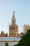 Bell tower of Cathedral church,  Seville, Spain Royalty Free Stock Image
