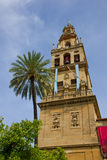 Bell tower of cathedral, Cordoba, Spain Royalty Free Stock Photo