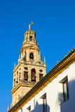 Bell tower of cathedral,  Cordoba, Spain Royalty Free Stock Photography