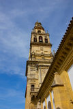 Bell tower of cathedral,  Cordoba, Spain Stock Images