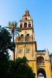 Bell tower of Cathedral. Cordoba Royalty Free Stock Photo