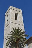 The bell tower of the cathedral with a palm tree. Stock Photos