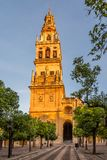 Bell tower Companario near Mosque-Cathedral in Cordoba, Spain. Bell tower Companario near Mosque-Cathedral in Cordoba - Spain Stock Photos