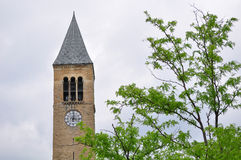 Bell tower of Cornell University. Campus building in Cornell University and grassland Stock Images