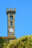 Bell tower, Fiesole, Italy. The tall bell tower of Fiesole, Italy, over a blooming bush royalty free stock images