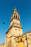 Bell tower of the Great Mosque Cathedral in Cordoba, Spain. View of the bell tower and former minaret of the Mosque-Cathedral of Córdoba against a clear blue Royalty Free Stock Photos