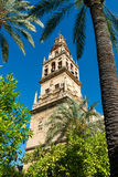 Bell tower of the Great Mosque Cathedral in Cordoba, Spain. View of the bell tower and former minaret of the Mosque-Cathedral of Córdoba against a clear blue Royalty Free Stock Image