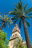 Bell tower of the Great Mosque Cathedral in Cordoba, Spain. View of the bell tower and former minaret of the Mosque-Cathedral of Córdoba against a clear blue Royalty Free Stock Photo