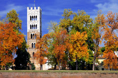 A bell tower of Lucca stock photos