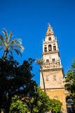 The bell tower at the Mezquita mosque & cathedral in Cordoba, Sp Royalty Free Stock Image