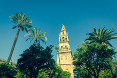 The bell tower at the Mezquita mosque & cathedral in Cordoba, Sp Stock Images