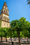Bell tower and Patio de los Naranjos of the Mosque-Cathedral, t royalty free stock photography