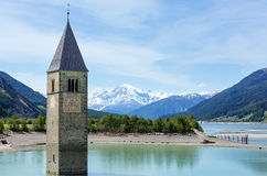 The bell tower in Reschensee (Italy). Royalty Free Stock Images