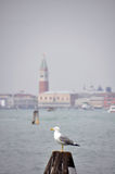 Bell tower of the Saint Giorgio Maggiore Church Royalty Free Stock Photography