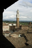 Bell Tower in Siena Stock Photography