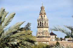 Bell Tower with Palm Trees in Cordoba, Spain. Stock Images