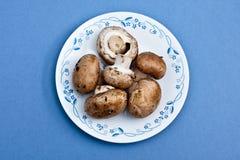 bella采蘑菇牌照 库存图片