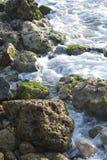 Bella acqua Fotografie Stock Libere da Diritti