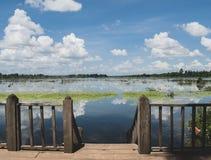 Bella acqua in Cambogia in Sud-est asiatico fotografie stock
